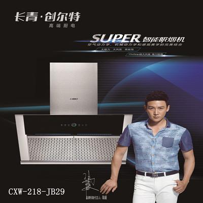 创尔特吸油烟机CXW-218-JB29